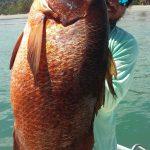 fishing in samara costa rica