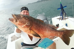 Cupera Snapper caught offshore