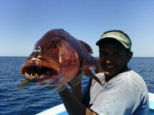 costa rica inshore fishing samara