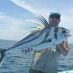 costa rica rooster fish, samara beach
