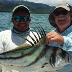 roosterfish samara costa rica