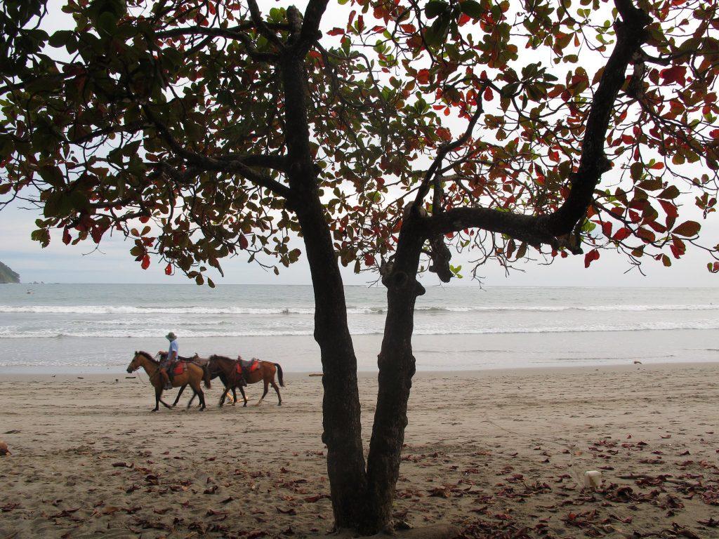 Samara Beach, Costa Rica